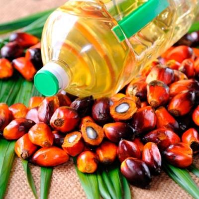 Добыча масла пальмы