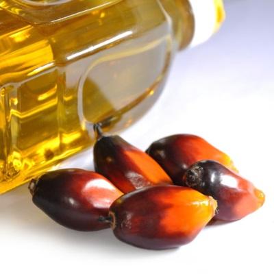 Определить пальмовое масло в продуктах