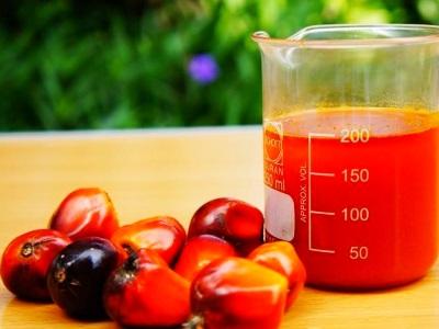 Плюсы красного пальмового масла