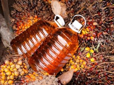 Причины использования пальмового масла
