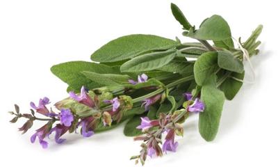 Натуральные добавки вкуса - это: шалфей, тимьян, шафран и другие растения природного происхождения