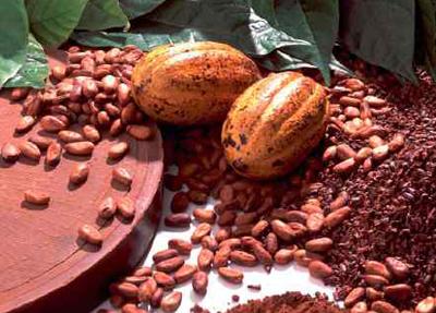 Какао-бобы - сырьё для лакомства