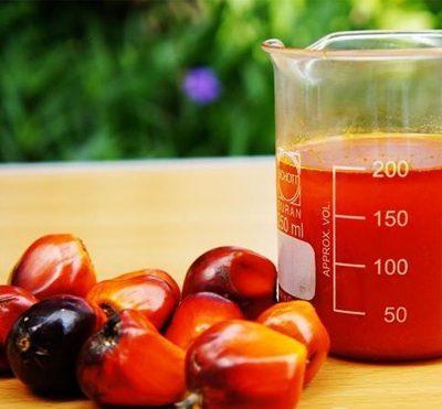Химические свойства и состав пальмового масла